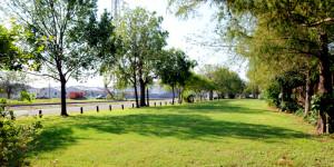 Press Street Gardens site
