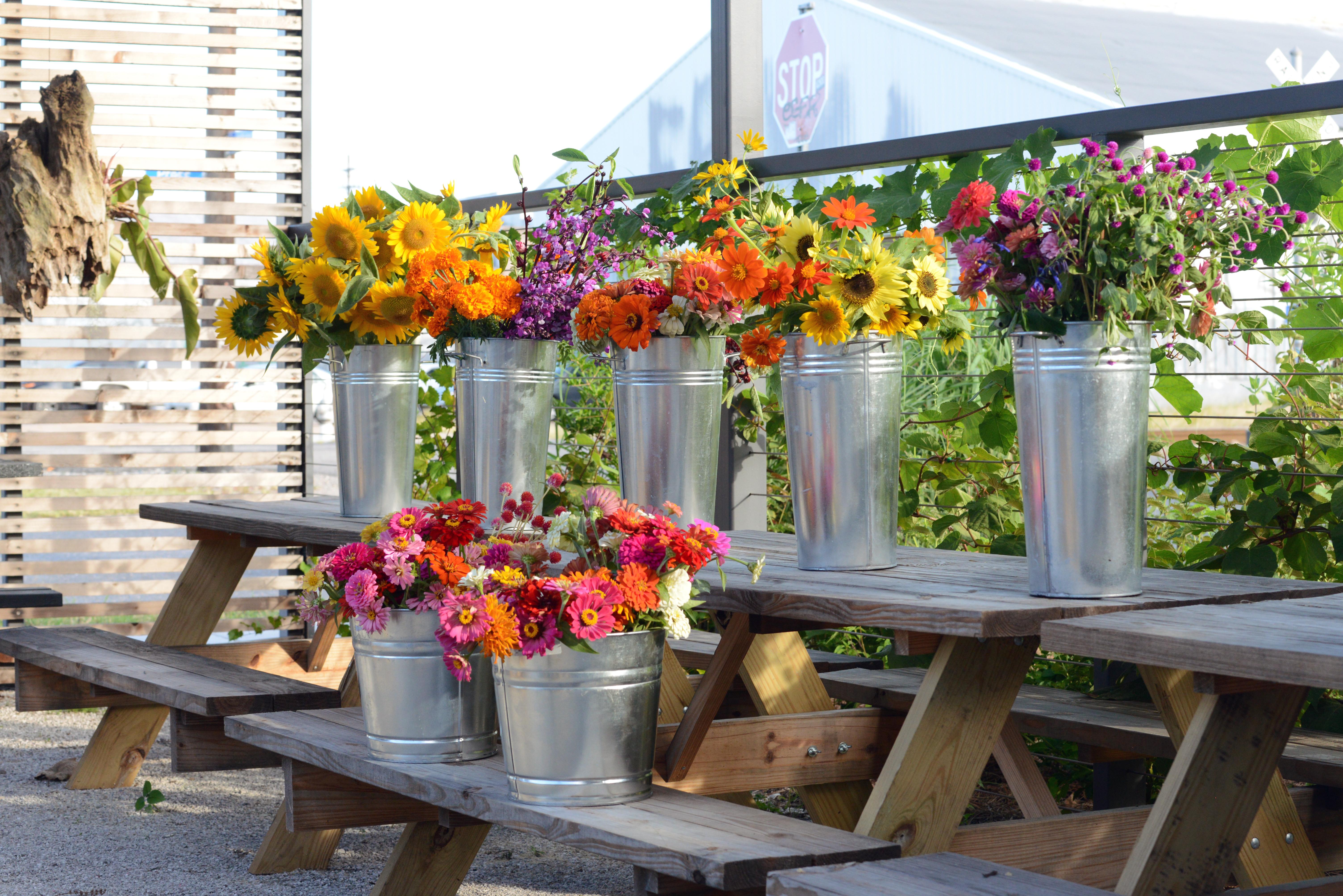 Fresh veggies and flowers from Press Street Gardens